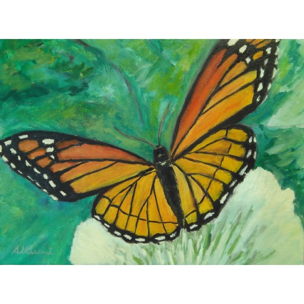 Cuadro mariposa 30x40